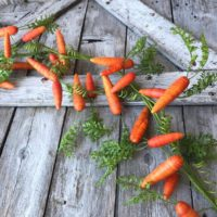 Easter Carrot Garland