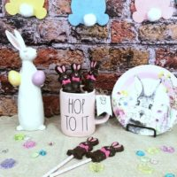 Fake Chocolate Candy Bunny Lollipop
