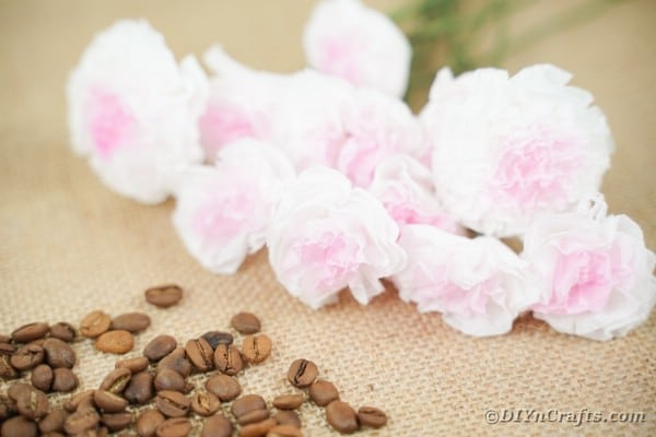 Tissue paper flowers on table with beans
