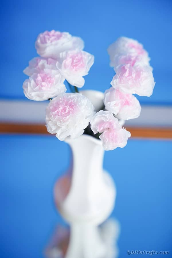 Tissue paper flowers in white face with blue background