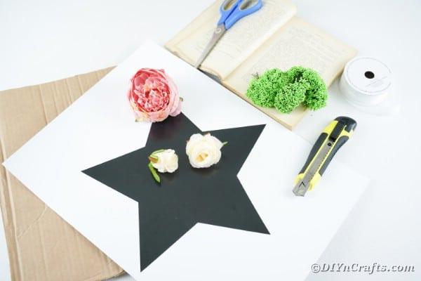 Supplies for making wall art star