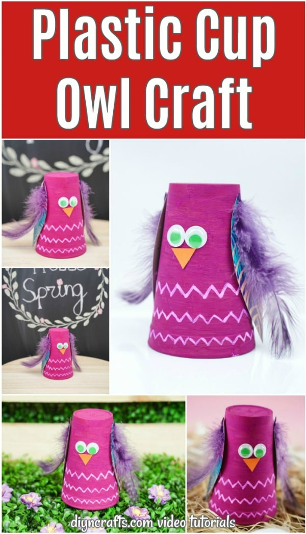 Pink plastic cup owl