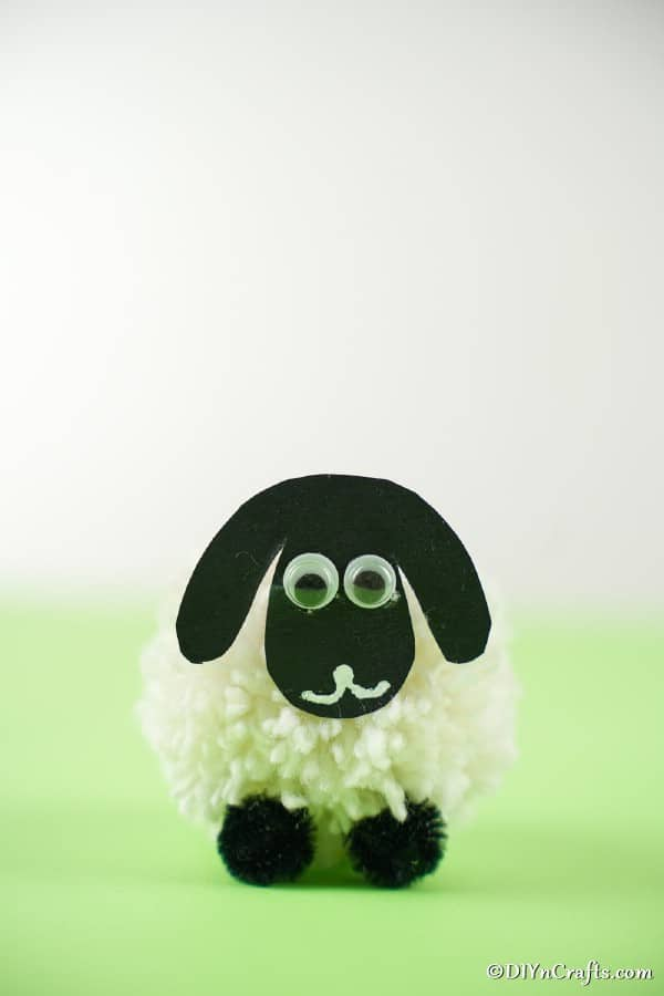DIY pom pom sheep on green surface with white background