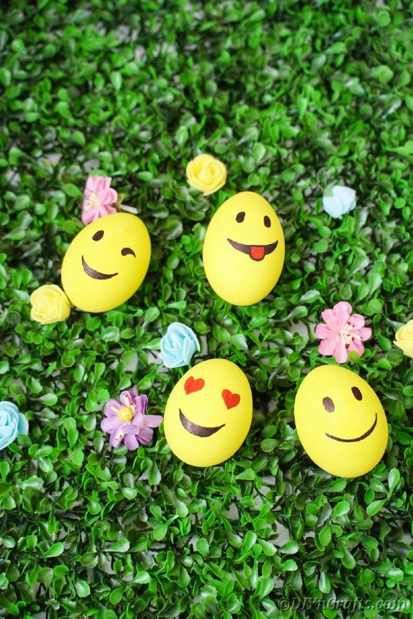 Yellow eggs on grass with flowers