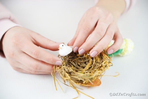 Gluing bird inside birds nest