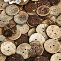 Coconut Wood Buttons