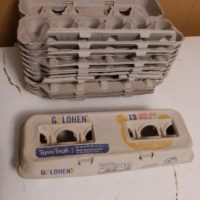 12 Empty Egg Cartons