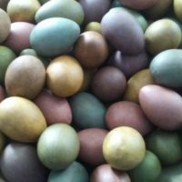 PrIMiTiVe - Pastel Handpainted Eggs