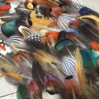 MULTIPACK natural feathers - eco friendly feathers