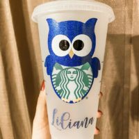 Starbucks Cold Cup - Owl w/ Name
