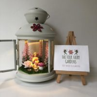 Pink Lavender Fairy Lantern