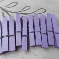 Painted Purple Clothespins