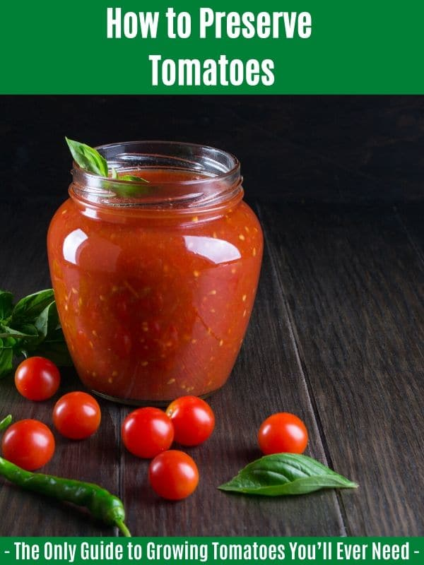 How to Preserve Tomatoes: