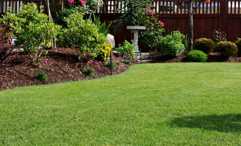 Beautiful mulched garden bed next to perfect lawn.
