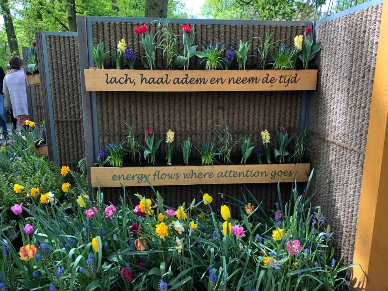 Motivational Wisdom at Keukenhof