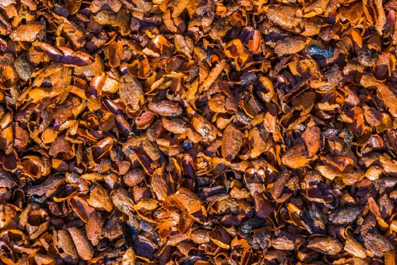 Cocoa chips mulch