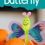 Purple and green butterfly in orange