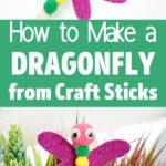 Craft stick dragonfly collage