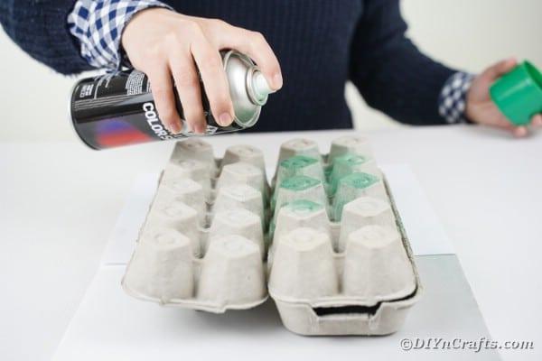 Spray painting egg carton