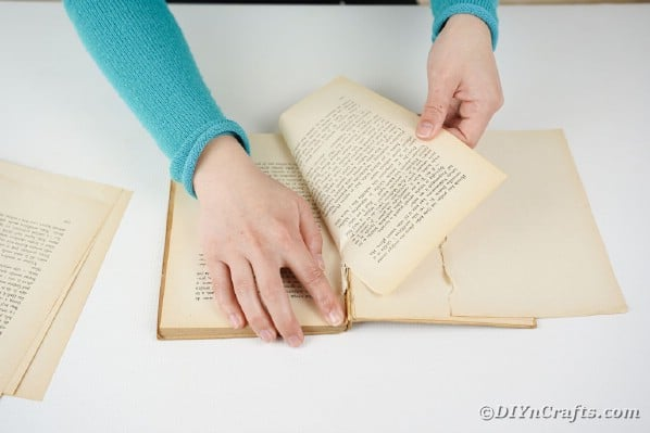 Tearing pages out of an old book