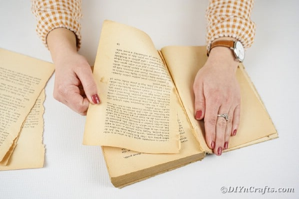 Tearing pages from book