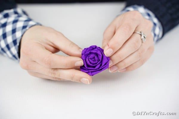 Rolling a purple tissue paper rose
