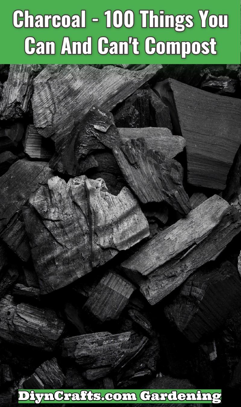 Coal or Charcoal