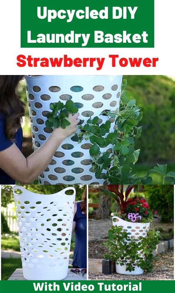 A few steps shown on a collage photo on how to make a strawberry planter.