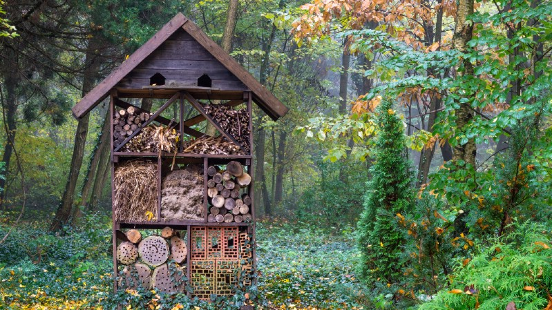 Big bee house placed in a forest.