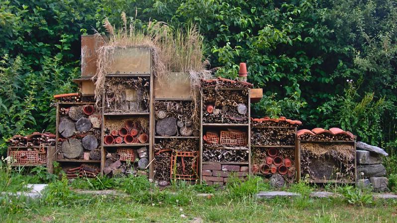 Bee hotel wall placed in backyard.