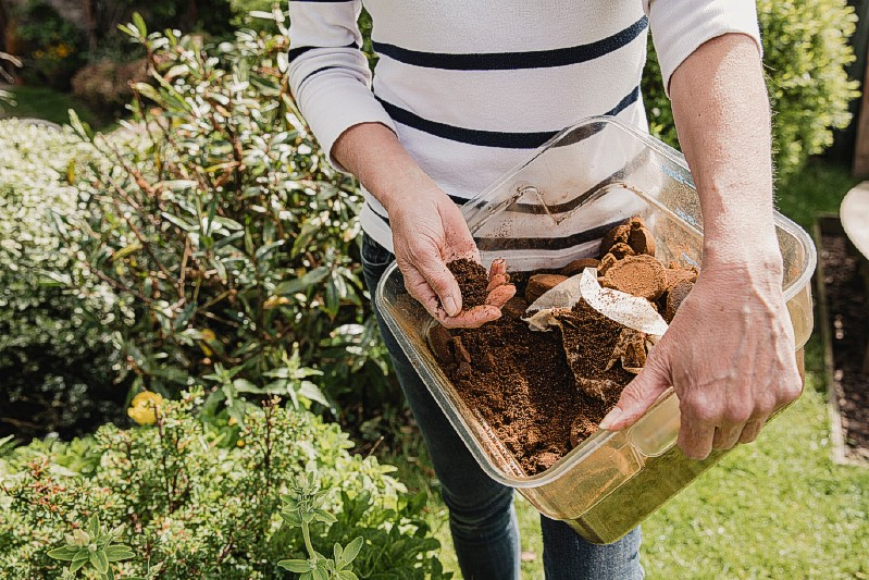 Fertilizer - Gardening uses for coffee grounds