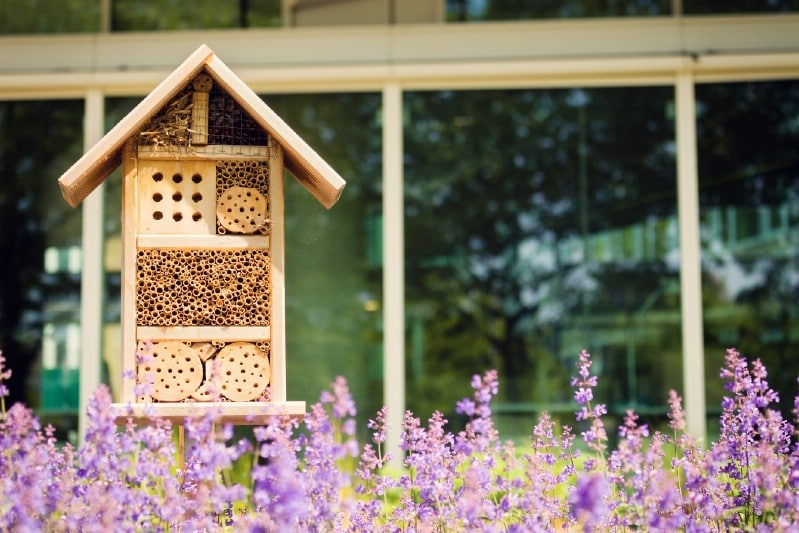 Finished bee hotel in the garden
