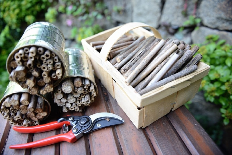 Materials used for a simple bee hotel.