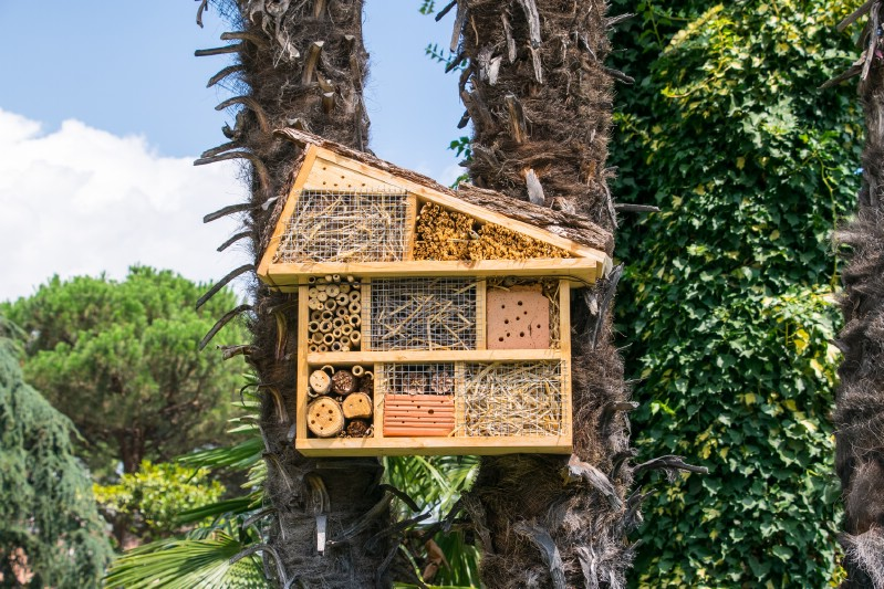 Multiple roomed bee hotel hung on a tree.