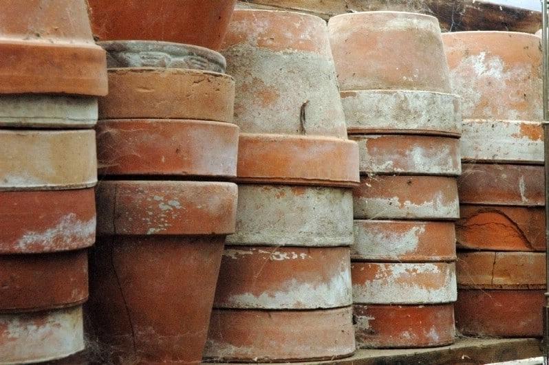 Scrub Your Garden Pots