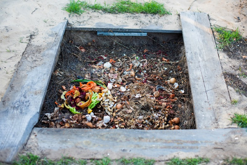 Add Eggshells to the Compost Pile