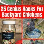 Chicken hacks collage
