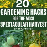 Garden Hacks Collage