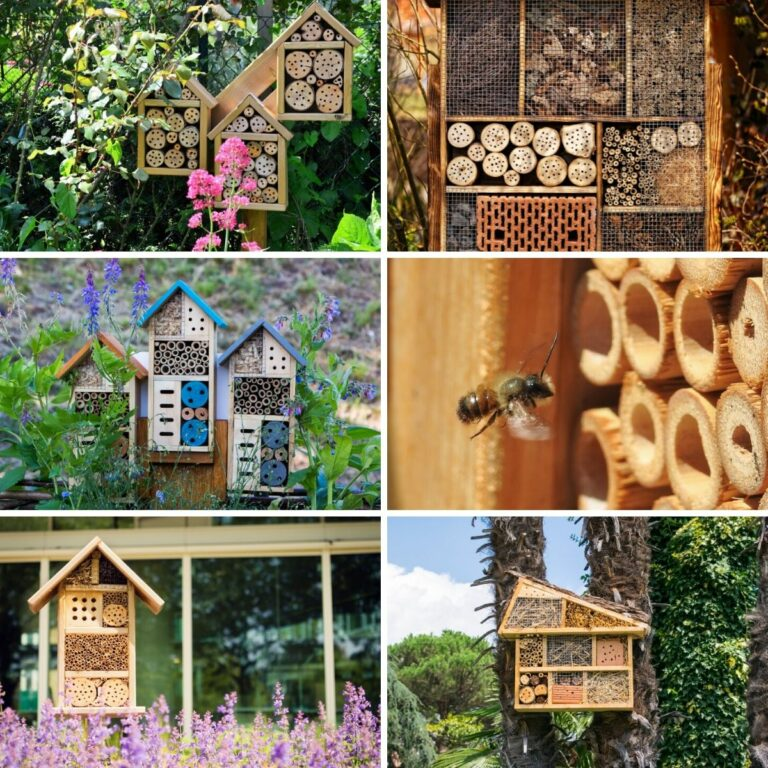 Collage photo featuring bee hotels.