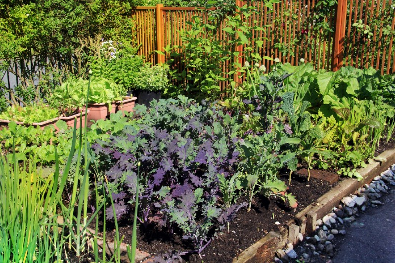 High-intensity gardening example