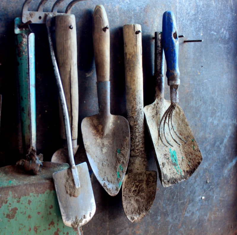 Dirty farmers tools hanged.