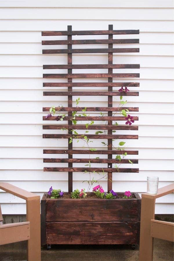 Vertical trellis planter