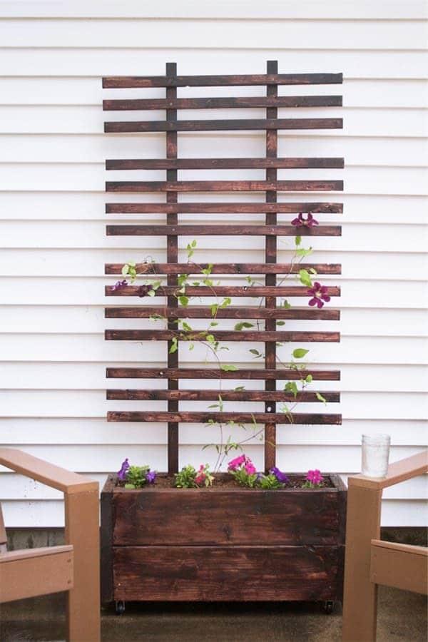 Vertical trellis planter