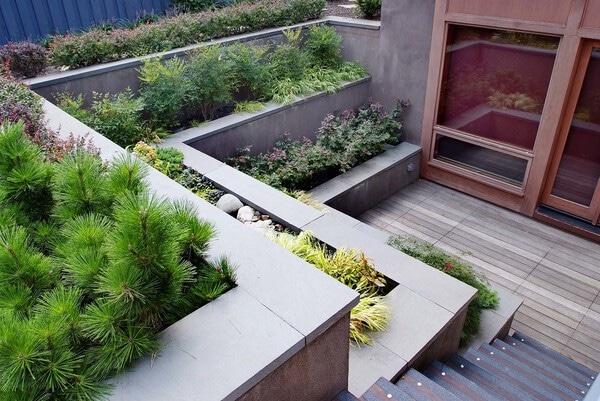 Tiered concrete backyard planter