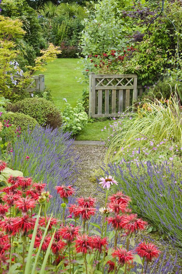 Winding garden path with red flowers