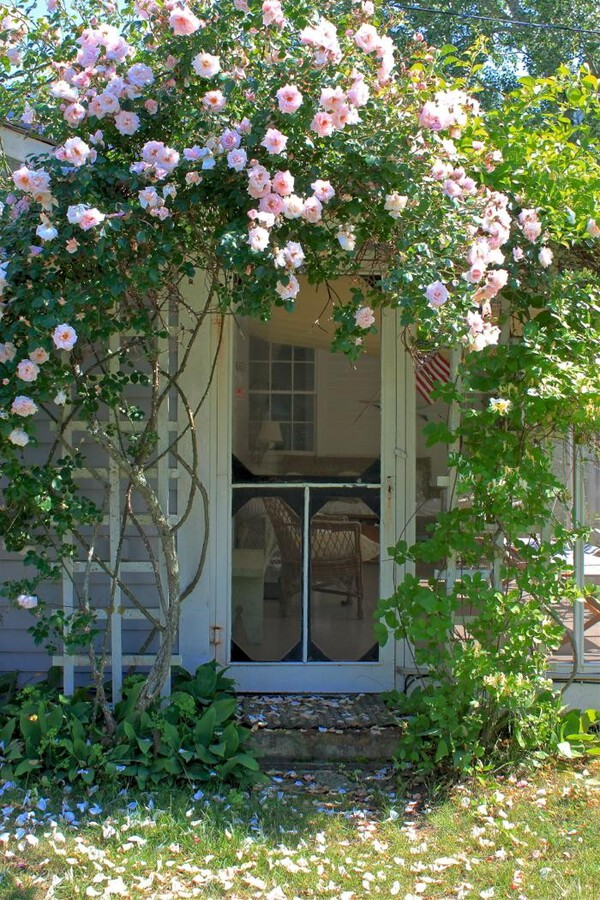 Arbor over cottage door