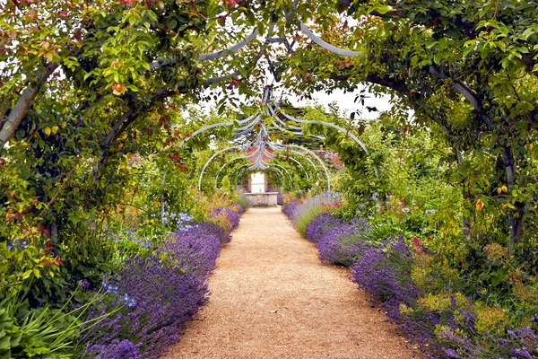 Garden arch over trail
