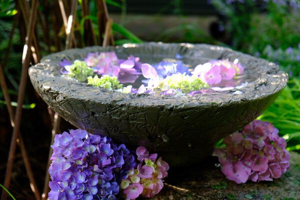 Concrete birdbath with purple flowers