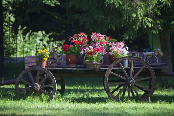 Wooden wagon with flowers