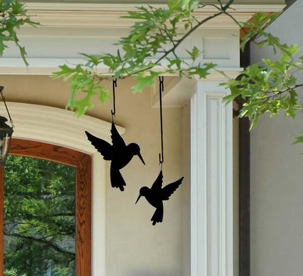 Black hummingbirds